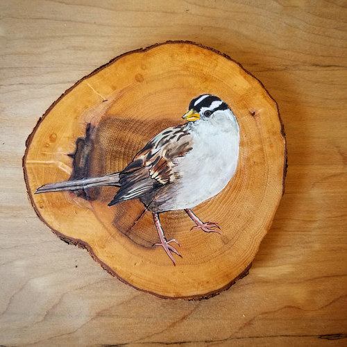 A painting of a bird on a tree ring
