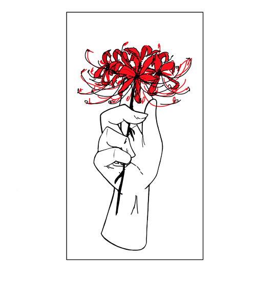 A digital drawing of a hand holding a spider lily