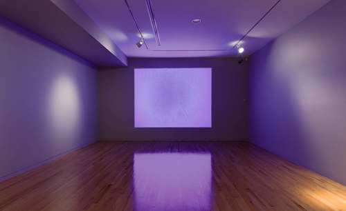 A photograph of a projection of solid purple in a gallery space