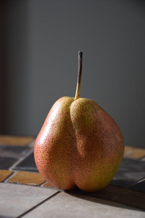 A photo of a single pear in the sun