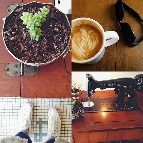 multiple photographs of a plant, coffee, a sewing machine and some shoes