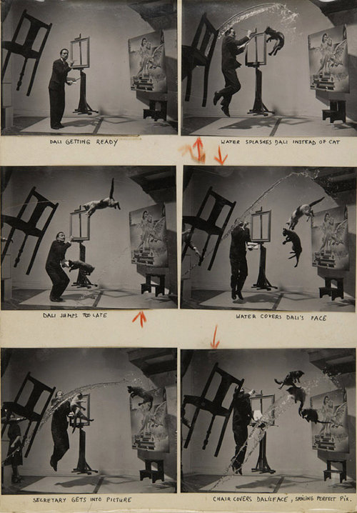four photographs of salvador dali jumping in the air with a cat and water splashing in the air