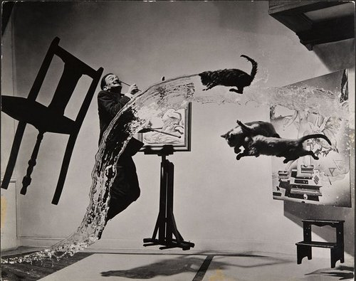 single photograph of salvador dali jumping with three cats flying through the air and a big splash of water