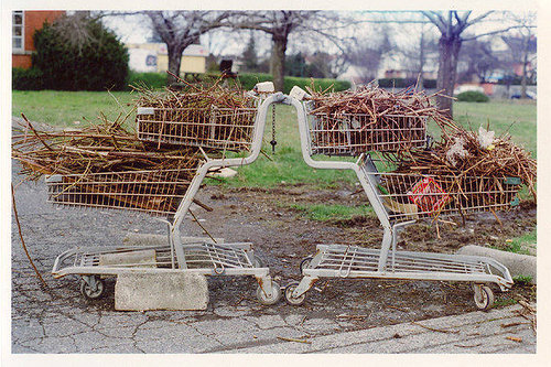 A photograph of two shopping carts filled with twigs