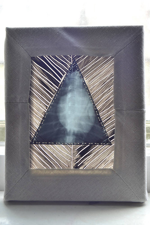 An abstract sculptural image collaged over an animal x-ray