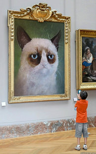 Grumpy cat in an art gallery
