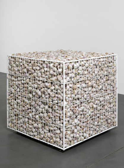 An image of a steel crate filled with garlic cloves