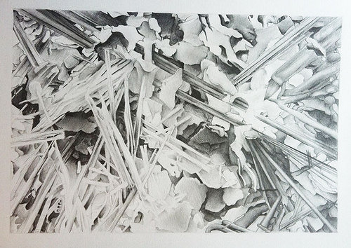 An abstract black and white graphite drawings