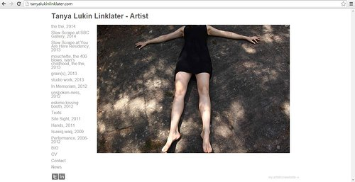 A screen capture of Tanya Lukin Linklater's website