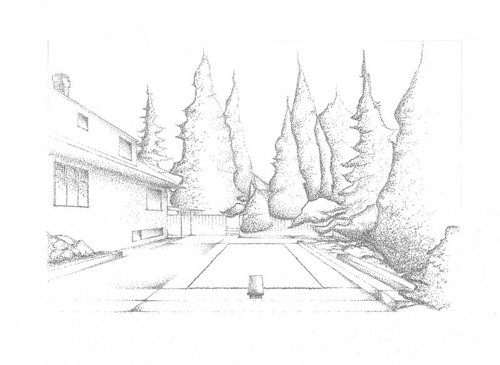 An ink drawing of some trees in a backyard, made with a pointilism-like technique