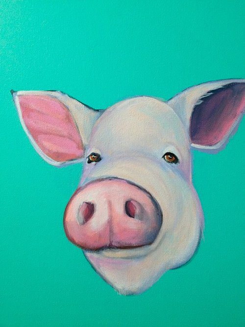 A portrait of a pig on an aqua background
