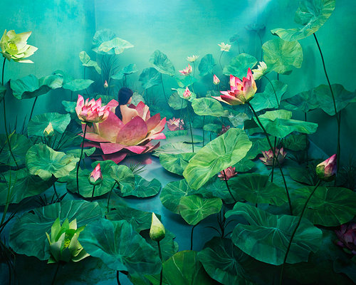 A photo of a young woman almost hidden in a dreamlike set of lily pads