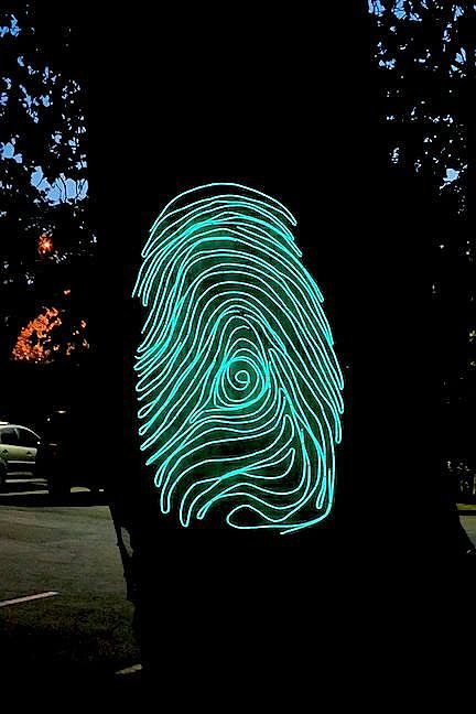 An installation view of fingerprint made of luminous cable attached to a tree trunk