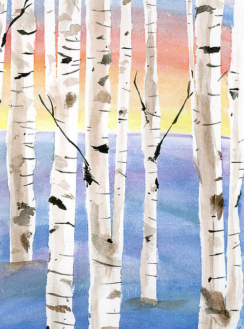 A watercolour painting of birch trees at sunrise