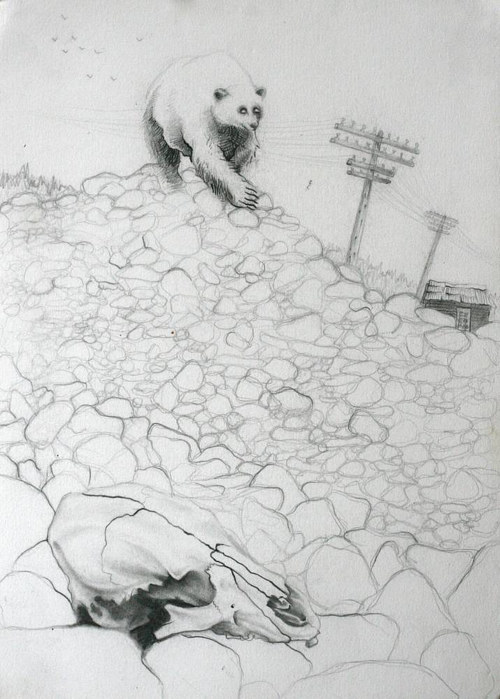 A pencil drawing of a bear walking over a pile of stones, with a cow's skull in the foreground
