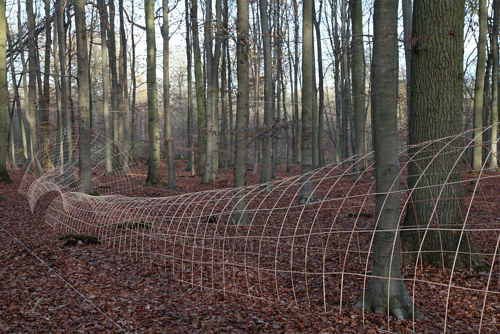 A photo of a net-like sculptural structure in the forest