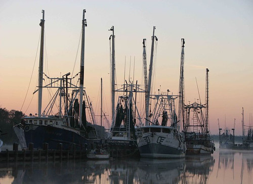 A photo of a fleet of ships at harbour in twilight or early morning light.