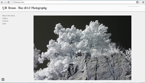 A front page screen capture of L.M. Braun's photography website