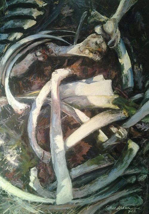 A pastel drawing of some clean cow bones on the ground