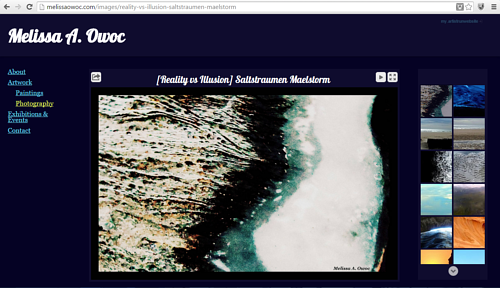 A screen capture of Melissa A. Owoc's website