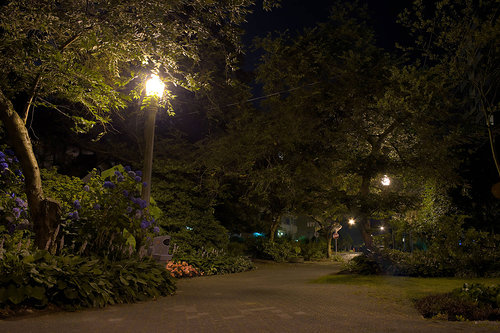 Night photograph of a walkway