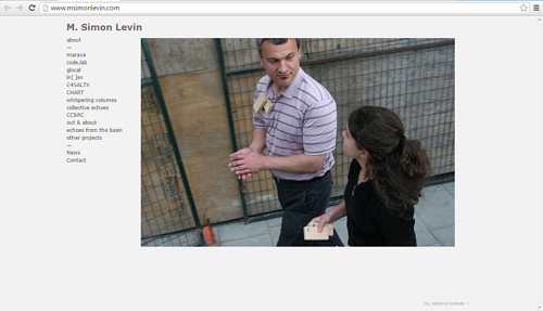 A screen capture of the front page of M. Simon Levin's website