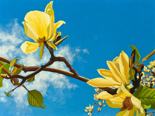 A painting of two yellow magnolias against a blue sky backdrop