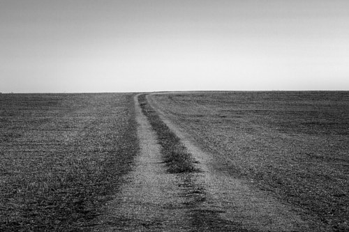 A photo of a barren field in Towanda, Illinois