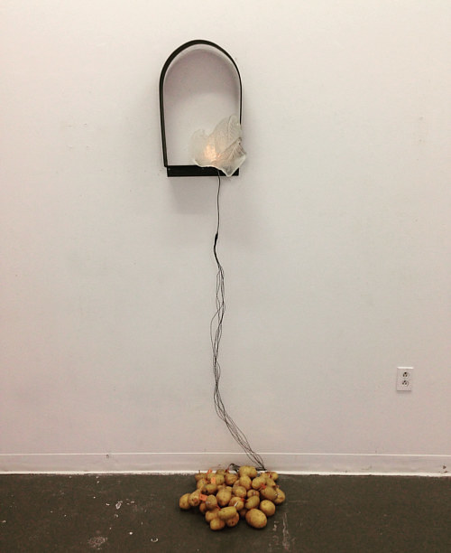 An installation utilizing a cast glass lamp powered by potatoes