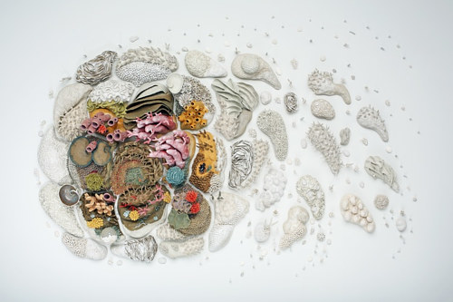 A wall installation of ceramic corals