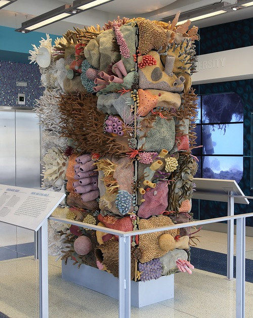 A gallery installation featuring a structure covered in ceramic corals