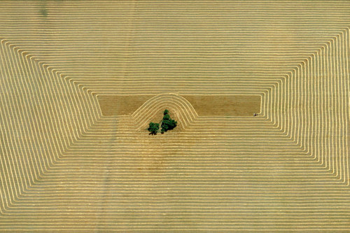 An aerial photo of a harvest field in Argentina