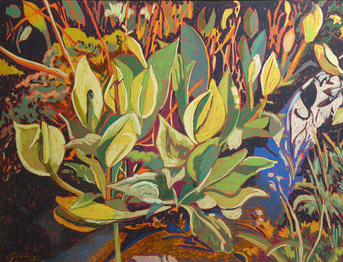 A stylized painting of a skunk cabbage