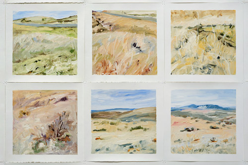A series of paintings of different terrain
