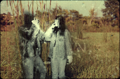 A photo manipulation of two obscured human figures in a field