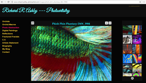 A screen capture of Richard Ashby's online photography portfolio