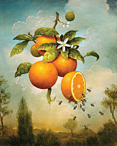 painting of bees eating oranges