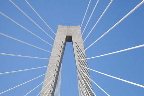 A photo of the Charleston Bridge in South Carolina
