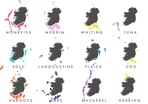 A infographic map of Ireland's fishing grounds