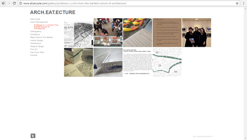 A screen capture of a project on Alice Coyle's website