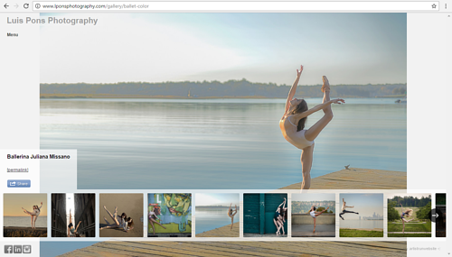 A screen capture of the color photo gallery on Luis Pons' website