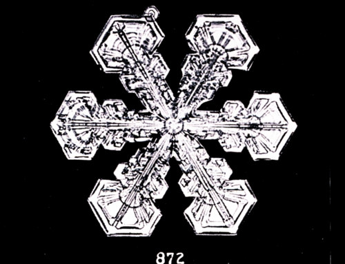 A photograph of an individual snowflake