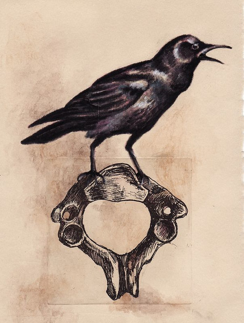 A print of a crow sitting on a bone