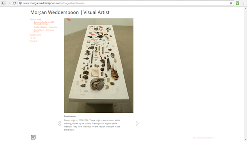 An artwork pictured on Morgan Wedderspoon's portfolio website
