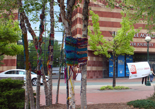 A photo of a yarn bombing by Olga de Klein