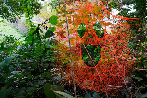 A photo of a spider web lacquered by Michael Anthony Simon