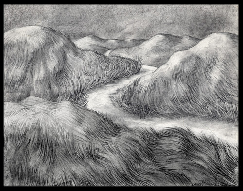 A charcoal drawing of a path running through a grassland