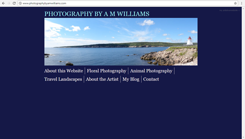 The front page of A.M. Williams' photography website