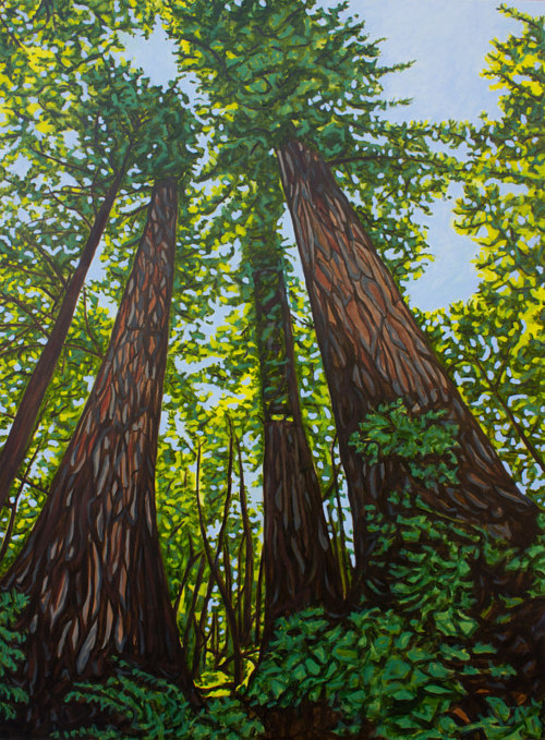 A painting of redwood trees from an upward angle