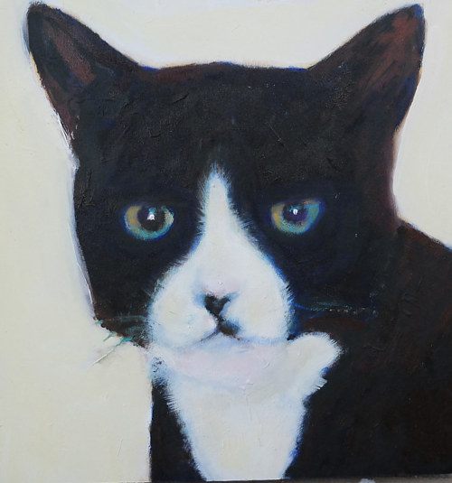 A painting of a black cat with white markings